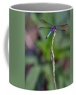 Blue Dragonfly On A Blade Of Grass  Coffee Mug