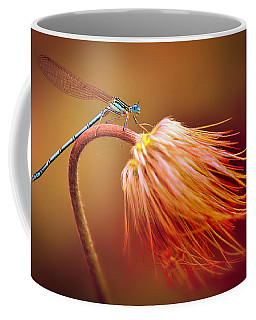 Blue Dragonfly On A Dry Flower Coffee Mug