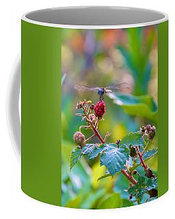 Blue Dragonfly On Berry Coffee Mug
