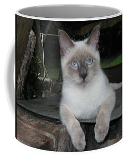 Blue Eyes Coffee Mug by Deborah Lacoste