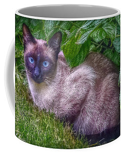 Coffee Mug featuring the photograph Blue Eyes - Signed by Hanny Heim