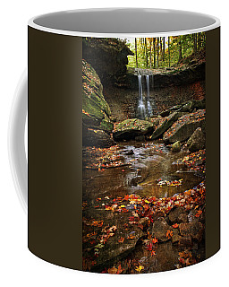 Blue Hen Falls In Autumn Coffee Mug