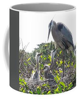 Coffee Mug featuring the photograph Blue Heron Family by Ron Davidson