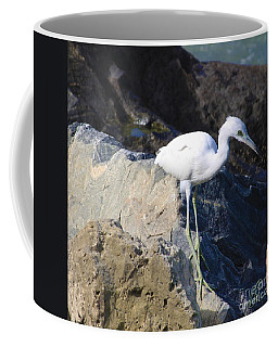 Blue Heron Squared Coffee Mug by Chris Thomas