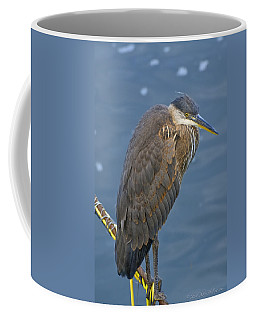 Coffee Mug featuring the photograph Blue Herron by Jim Thompson