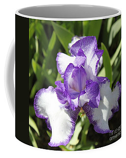 Blue Iris Coffee Mug by Bev Conover