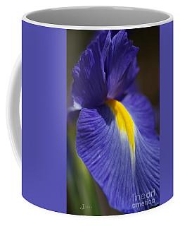 Blue Iris With Yellow Coffee Mug