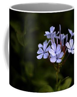 Coffee Mug featuring the photograph Blue Jasmine by Ramabhadran Thirupattur
