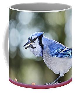 Blue Jay Bird Coffee Mug