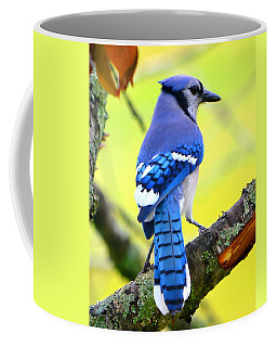 Coffee Mug featuring the photograph Blue Jay by Deena Stoddard