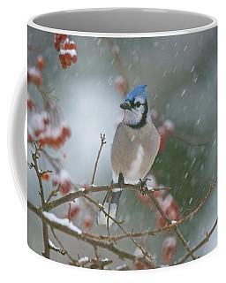 Blue Jay In Snow Coffee Mug