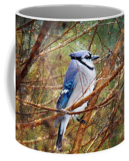 Coffee Mug featuring the photograph Blue Jay by Trina  Ansel
