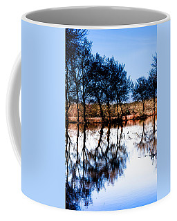 Blue Mirror Coffee Mug