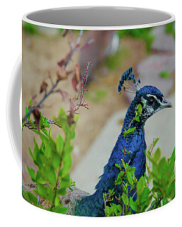 Blue Peacock Green Plants Coffee Mug by Jonah  Anderson