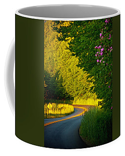 Coffee Mug featuring the photograph Blue Ridge Afternoon by John Haldane