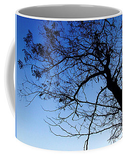 Coffee Mug featuring the photograph Blue Sky by Andrea Anderegg