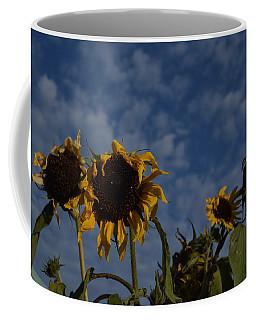 Coffee Mug featuring the photograph Blue Sky Buddies by Brian Boyle