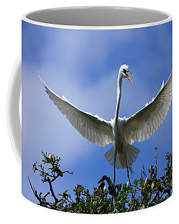 Coffee Mug featuring the photograph Blue Sky Landing by John F Tsumas