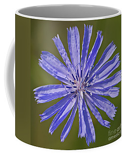 Blue Star... Coffee Mug
