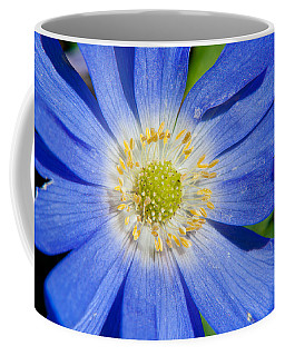 Blue Swan River Daisy Coffee Mug