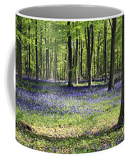 Bluebell Wood Uk Coffee Mug