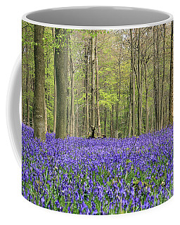 Bluebells Surrey England Uk Coffee Mug