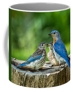 Bluebird - Father And Sons Coffee Mug