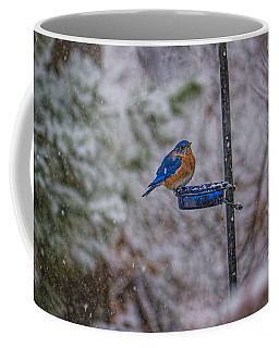 Bluebird In Snow Coffee Mug