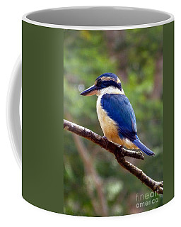 Bluebird In Suva Fiji Coffee Mug
