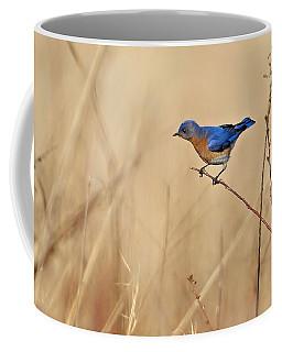 Bluebird Meadow Coffee Mug