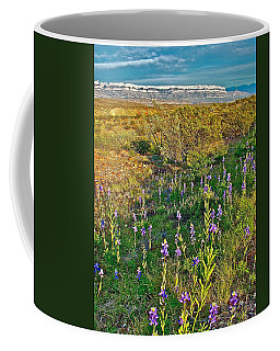 Bluebonnets And Creosote Bushes In Big Bend National Park-texas Coffee Mug by Ruth Hager
