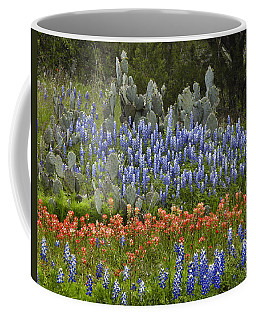 Bluebonnets Paintbrush And Prickly Pear Coffee Mug