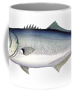 Bluefish Coffee Mug