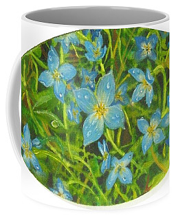 Bluets Of The Shenandoah  Coffee Mug