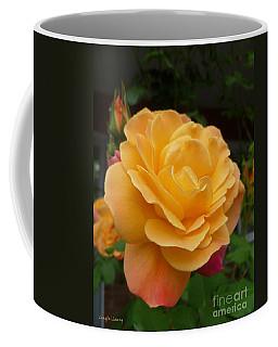 Coffee Mug featuring the photograph Blushing Rosalina by Lingfai Leung