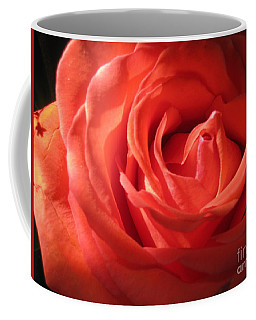 Blushing Orange Rose 1 Coffee Mug