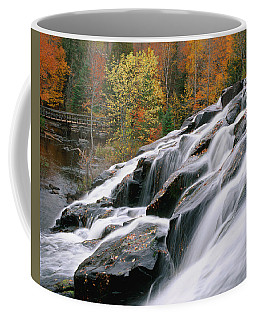 Bond Falls Upper Peninsula Michigan Coffee Mug