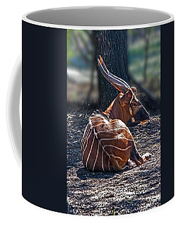 Bongo Coffee Mug by Miroslava Jurcik