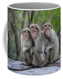 Bonnet Macaque Trio Huddling India Coffee Mug