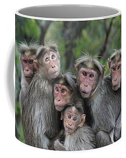 Bonnet Macaques Huddling Western Ghats Coffee Mug