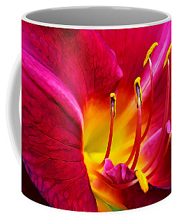 Boothbay Burgundy Coffee Mug