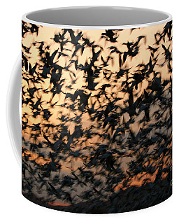 Coffee Mug featuring the photograph Bosque Sunrise Blastoff by John F Tsumas