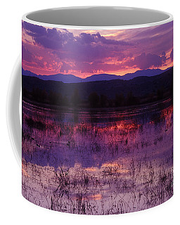 Bosque Sunset - Purple Coffee Mug