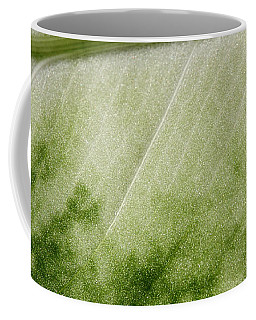 Botanical Freeway Coffee Mug