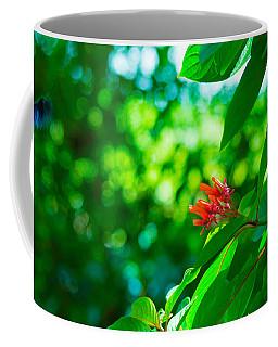 Botanical Garden Butterfly Coffee Mug
