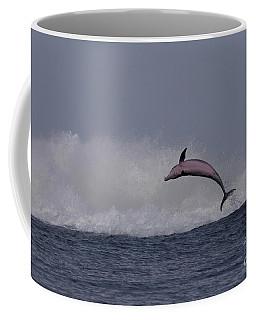 Bottlenose Dolphin Photo Coffee Mug