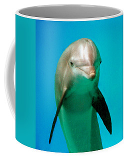 Bottlenose Dolphin Portrait Coffee Mug