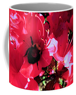 Coffee Mug featuring the photograph Bottoms Up by Robyn King