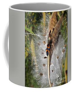 Boxelder On Butterfly Milkweed 2 Coffee Mug