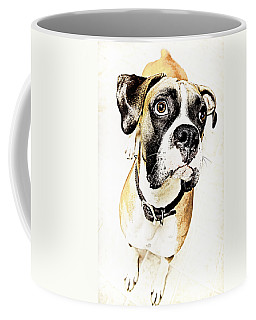 Coffee Mug featuring the photograph Boxer Dog Poster by Peter v Quenter